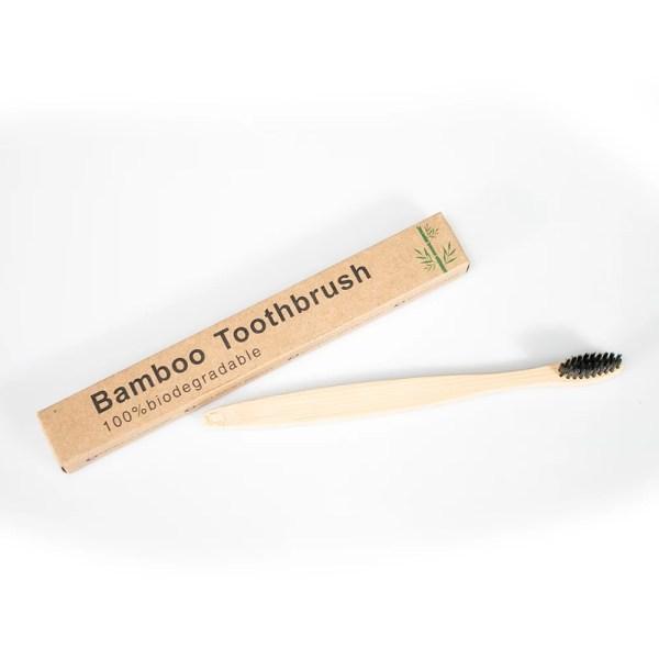 biolagunev-bambus-hambahari