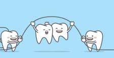 hammaste faktid blog