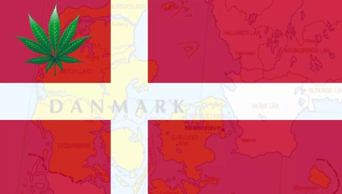 cannabis in copenhagen - cannabis trials in denmark