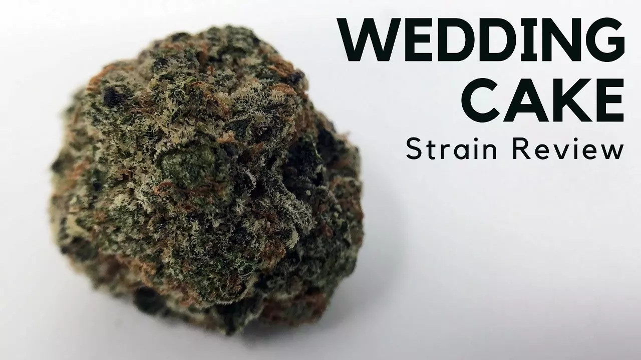 Wedding Cake Cannabis Strain Information & Review - ISMOKE