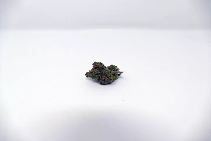 Blues Cannabis Strain, Blues Cannabis Strain Information & Review
