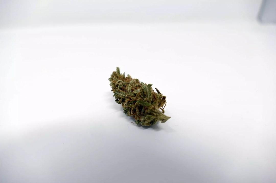 Grapefruit Diesel, Grapefruit Diesel Cannabis Strain Information, ISMOKE