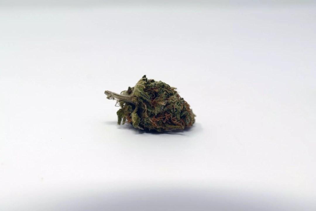 Critical Plus, Critical Plus 2.0 Cannabis Strain Information & Review, ISMOKE