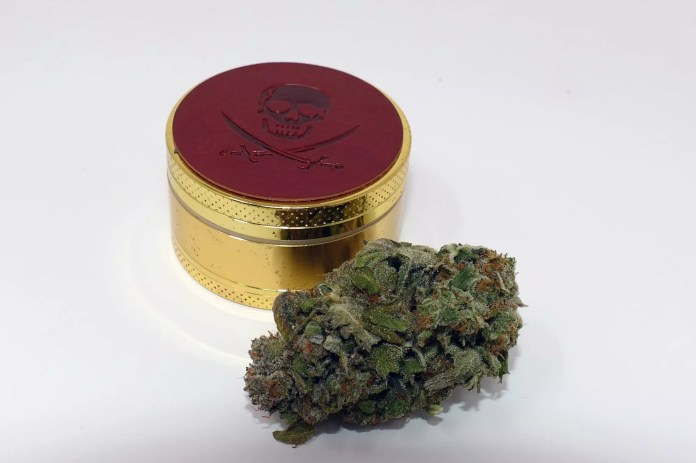 Jaffa Caked Cookies Cannabis Strain Information & Review