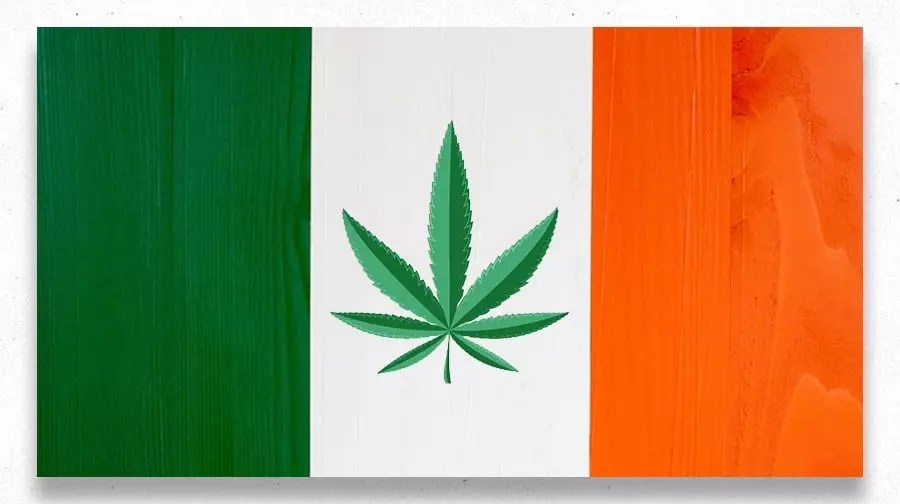 , Exploring the European Cannabis Scene (Part 2)