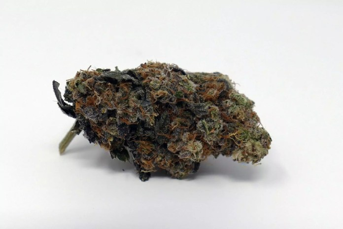 Road Dawg, Road Dawg – Cannabis Strain Review & Information