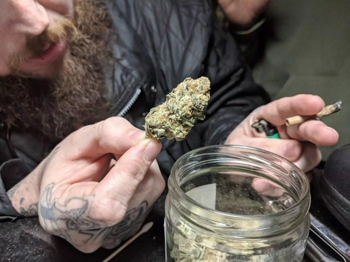 Original Alternative, Visiting The Original Alternative Cannabis Club in Spain