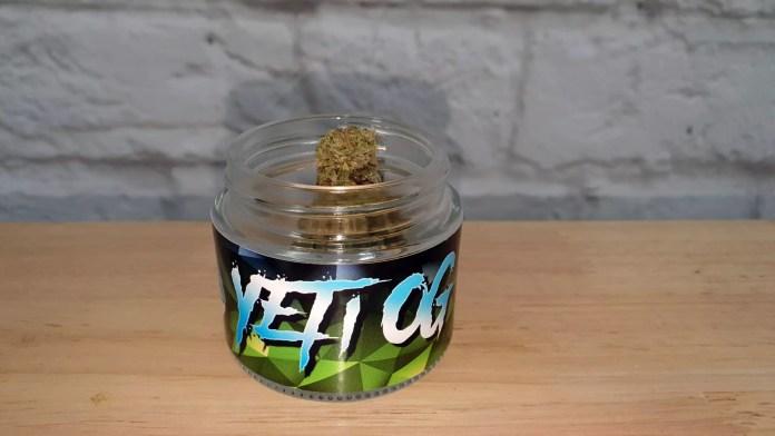 , Yeti OG Cannabis Strain Review & Information