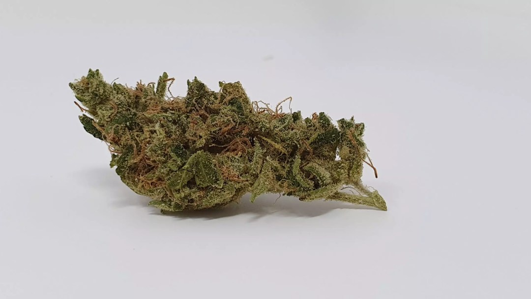 , Sour Tangie Cannabis Strain Review & Information, ISMOKE
