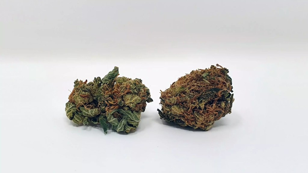 Sour Headstash, Sour Headstash Cannabis Strain Review & Information, ISMOKE