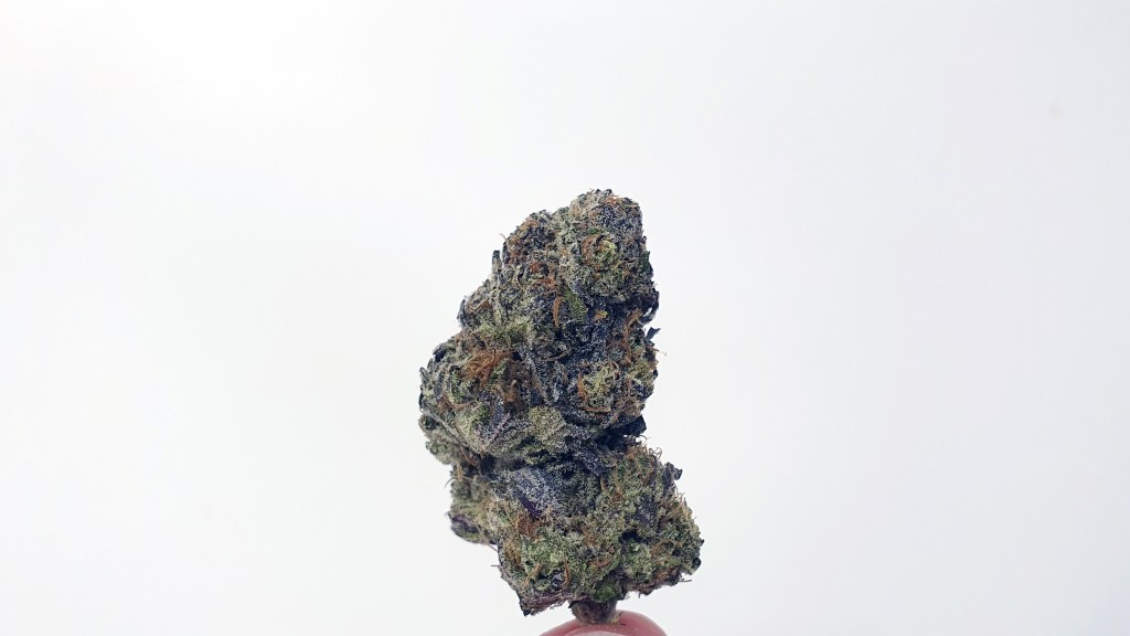 Girl Guide Cookies, Girl Guide Cookies Strain Review & Information