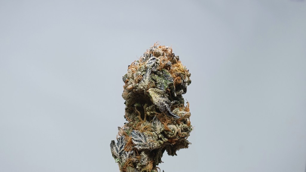Berry Strudel, Berry Strudel Cannabis Strain Review & Information, ISMOKE