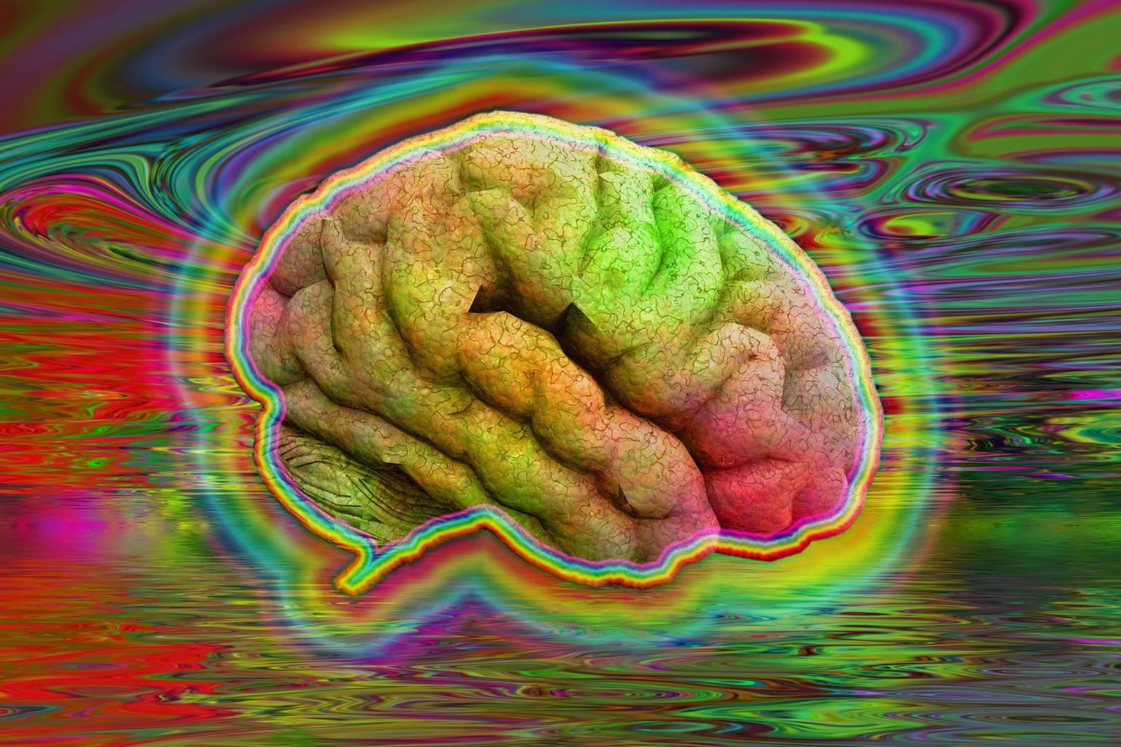 ¿Qué sucede realmente en el cerebro cuando se toman psicodélicos?