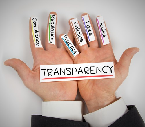 Tips on Instituting a Data Transparency Policy: A Focus on the Publications Professional