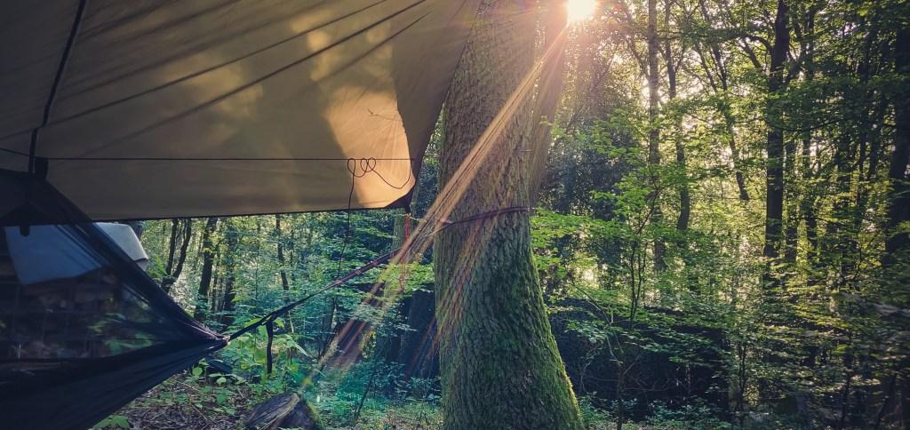 Die Morgensonne, die einen aus der Hängematte holt.