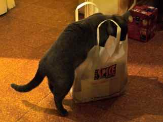 Sorting the Groceries