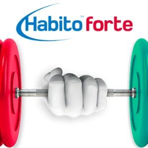 Lastra-in-cartongesso-rinforzata-HABITO-FORTE–Saint-Gobain-isobit.it