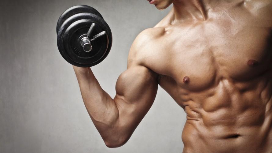 効率的に筋肉をつけるには?