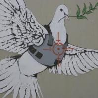 paloma de la paz con la chaqueta
