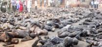 islam violento strage nigeria