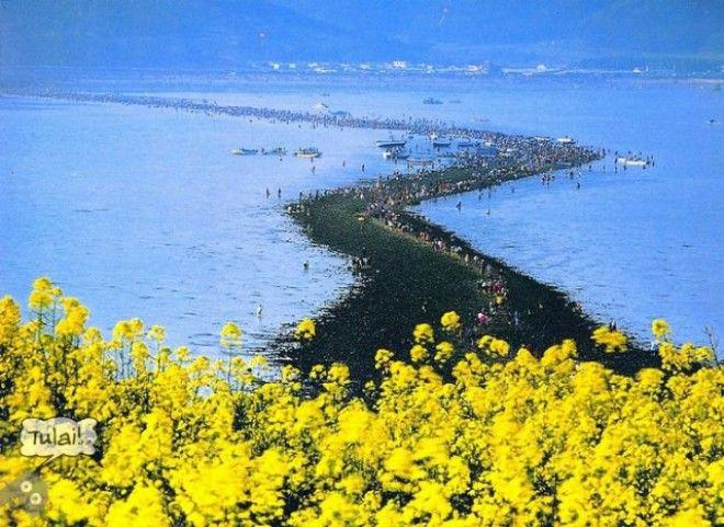 7-8 | Библейское чудо в Корее — два раза в году море расступается и тогда...