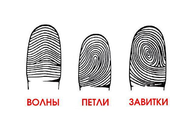 77b54706d893b594f837b9f4ac604acd | отпечатки твоих пальцев могут рассказать все о твоих способностях!
