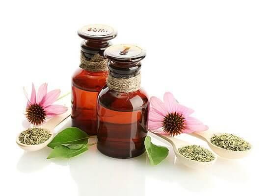 content_5 | Цветок здоровья, который поможет и взрослым и детям!