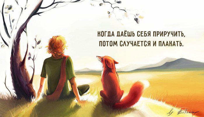 priruch | Лучшие цитаты из книги «Маленький принц»!