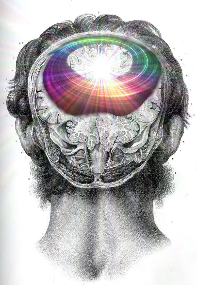 image1-56 | Как наше сознание меняет реальность?