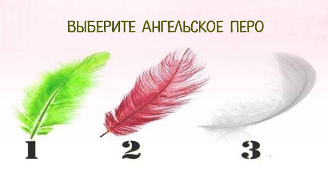 image1-17 | Выбери перо ангела и получи совет небес