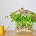 個人投資家はやらない時期を持つことも大切