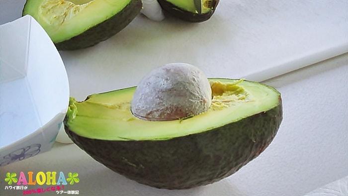 南国フルーツの試食2「アボカド」