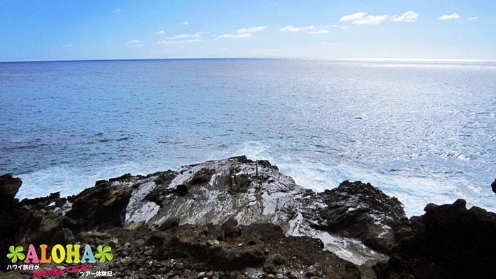 ハワイエコツアーズのツアー画像3