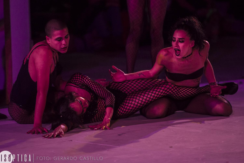 La Cebra- Danza Gay, clausuró el Encuentro Nacional de Danza 20