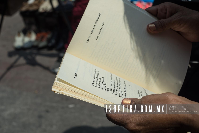 IV Jornada Mundial Al Aire Libro