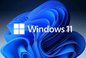 Windows 11 Build 22000.120: New Features & Fixes