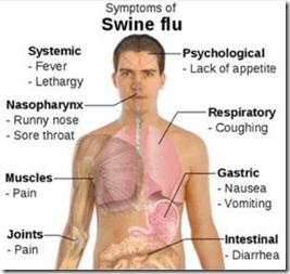 Ciri-ciri terserang flu babi