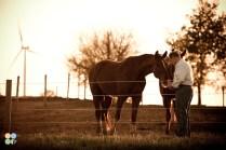 rosebud-horse-ranch-indiana12