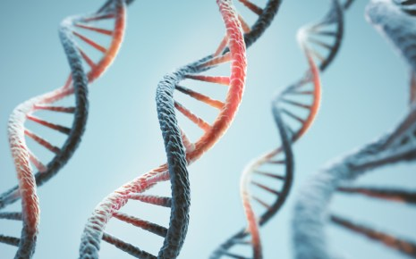 Spotlight On: DNA and RNA