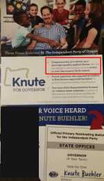Knute Buehler Independent Party flyer