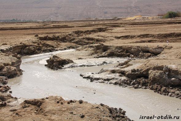 грязь мёртвого моря фото