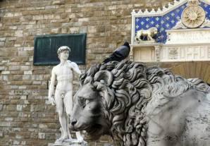 David de Miguel Ángel, Florencia