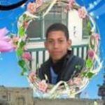 Mahmoud Khaled Abu Haddaf