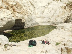 גב קינה - מים עם ירוקת (אוג'2010-אם כך.. יש שם מים כל השנה).