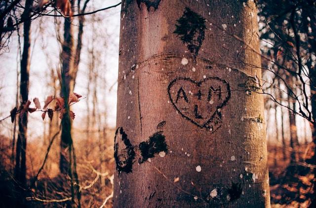 lecciones de amor que cambiarán tu vida