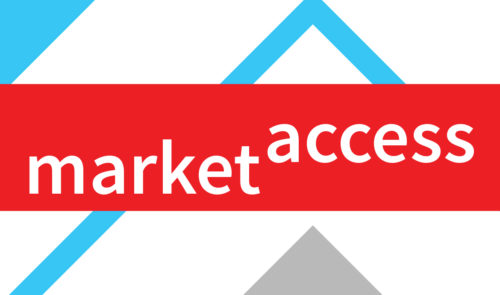 Preview image for Market Access: Department Models and Structures