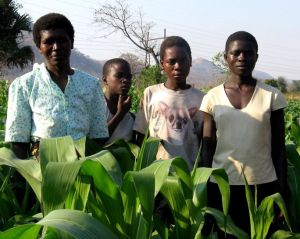 mother-and-three-of-her-children-stand-near-her-irrigated-field-in-ntechu-districit-malawi-684×544