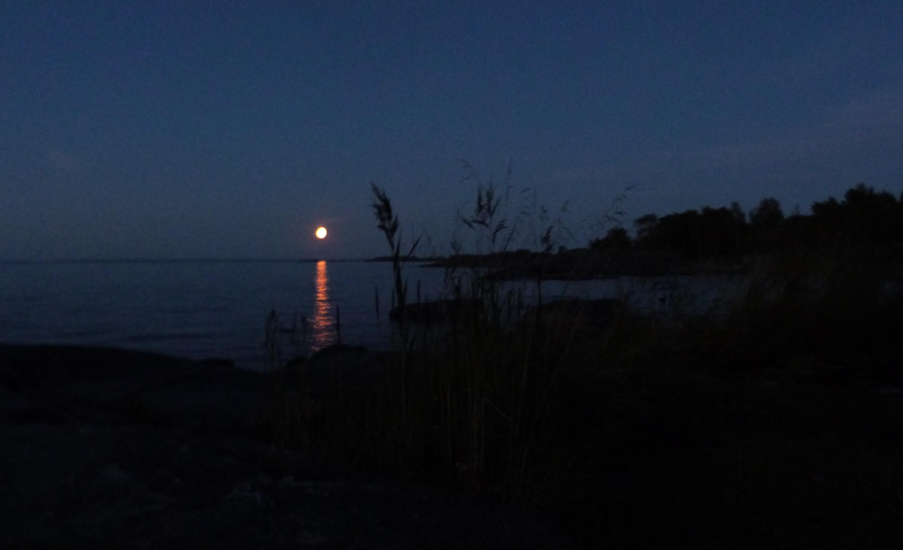 Twaalf heilige nachten
