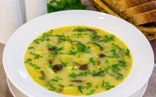 Комментарии к рецепту: Сырный суп с опятами
