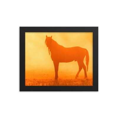 A horse at dusk Framed poster